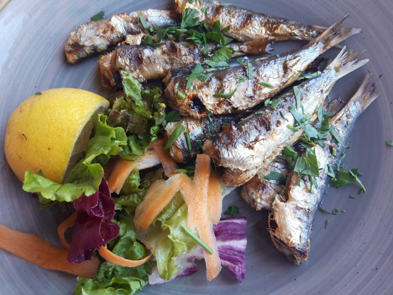 Bewertung Erfahrung Kritik Sardinen vom Grill Meltemi Cafe Restaurant Rhodos Stadt Griechenland Foodblog Sternestulle