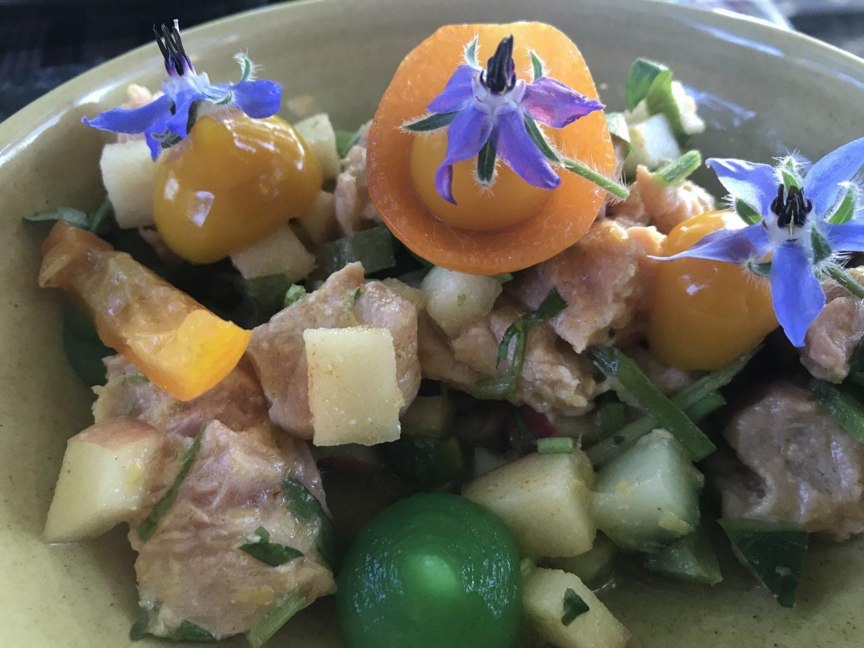 Erfahrung Bewertung Kritik Bachstelze Ceviche von der Forelle Foodblog Sternestulle