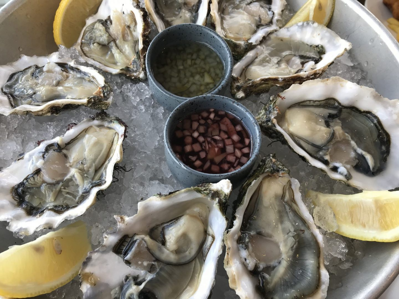 Erfahrung Bewertung Kritik Oase Domburg frische Austern Foodblog Sternestulle