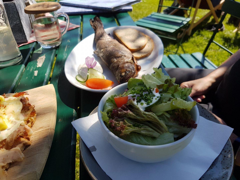 Erfahrung Bewertung Kritik Jausenstation Grünegg frisch geräucherte Forelle mit Salat Foodblog Sternestulle